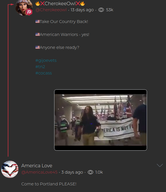 - IMAGE - dixie likes nazis