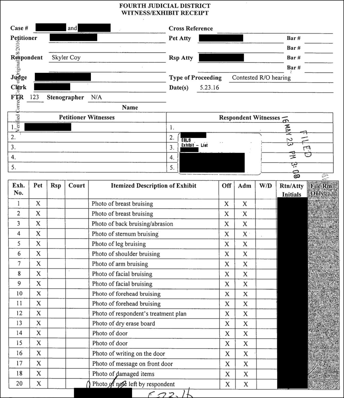 Skyler Coy court documents